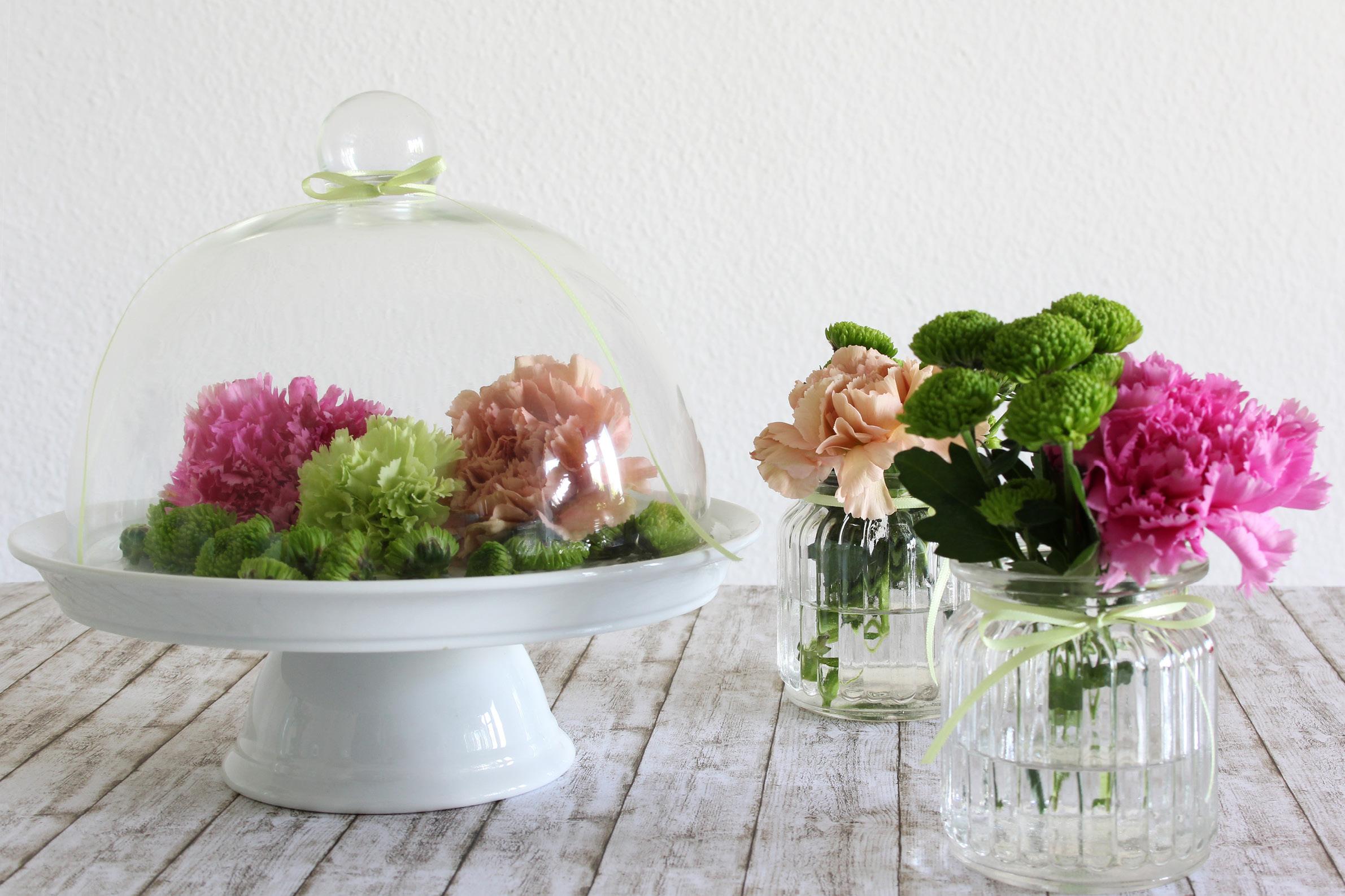 Blumen_Beitragsbild