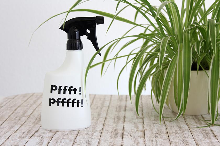 Pflanzenspray_Beitragsbild
