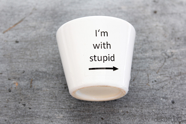 with_stupid5