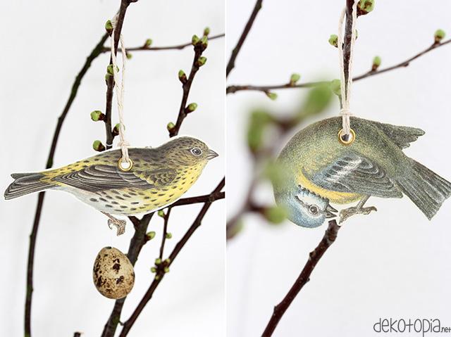 vogelanhaenger11