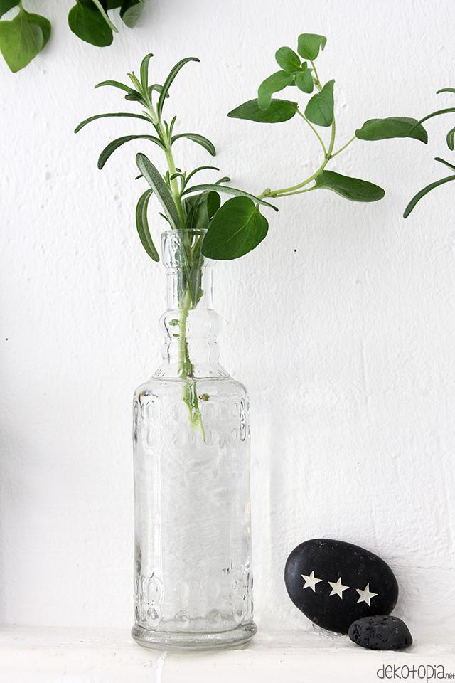 Kräuter in einer Flasche