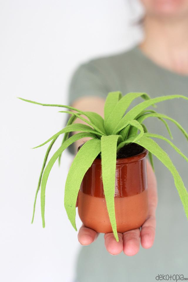 Diy Challenge Filz Projekt Zimmerpflanzen Aus Filz