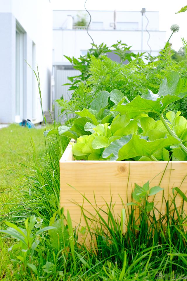 Garten DIY - einfaches Hochbeet selber bauen